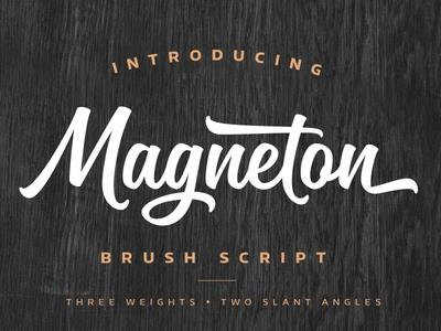 Magneton typeface font typeface type script brush typography
