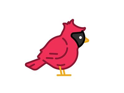 Cardinal bird cardinal