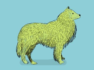 Dog Illustration  illustration dog