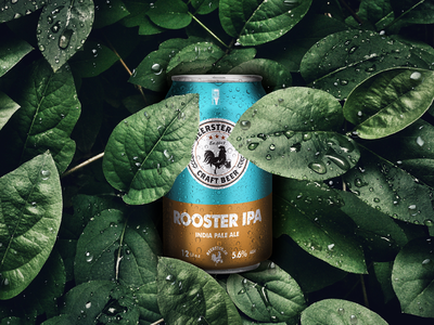 Beerster.co - Craft Beer Project can packaging label craft beer photography photo design graphic