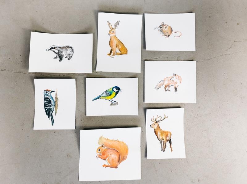 Animal illustration for game handmade animal illustration game paintings paint animal art illustrations design drawing illustration art dinksy graphic