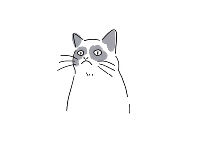 Illustration for Szkoła Patrzenia grumpy cat animal cat icon icons illustrations design drawing illustration art dinksy graphic