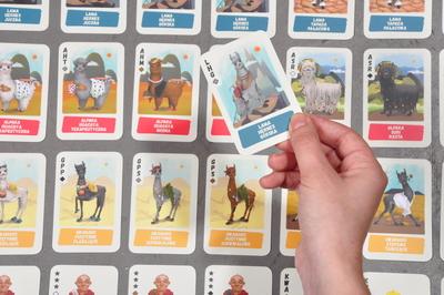 "Illustration for card game ""Lamokrady"""