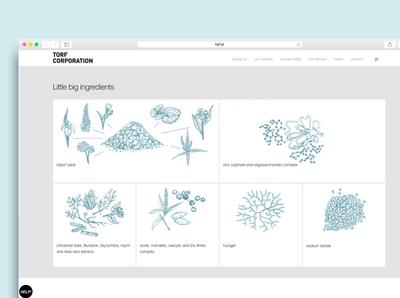 Website for torf corporation