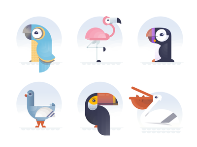 The Birds... shapes animals pelican toucan pigeon puffin flamengo parrot birds
