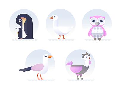 The Birds pt 2 series animal bird chicken hen seagul owl goose penguin birds