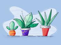 Plant Exploration cactus flower procreate style cartoon nature plant