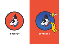 Bruno the SuperDog!