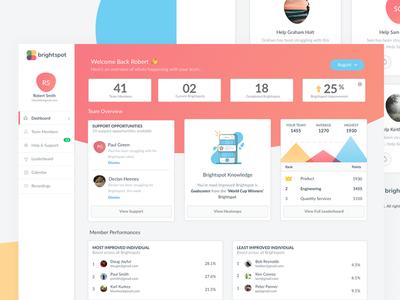 Brightspot Dashboard charts graphs activity insights brightspot dashboard