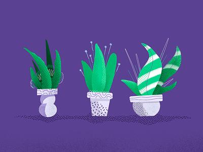 Plants V2 🌱 plant illustration illustration pot plant flower plant nature plants
