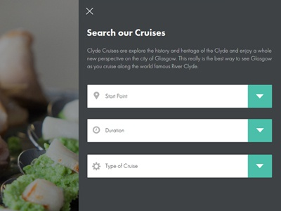 Cruise Search Overlay form icons futura