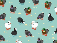 Birdwatching Pattern