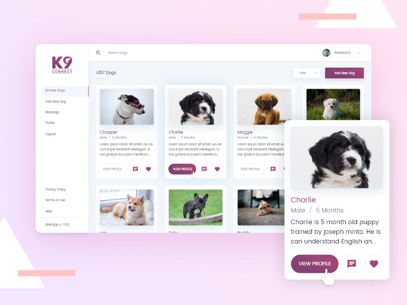 Dog Selling Website hire ui ux designer hire website designer hire designer user interface ui ux web app website dog adopt dog dog website