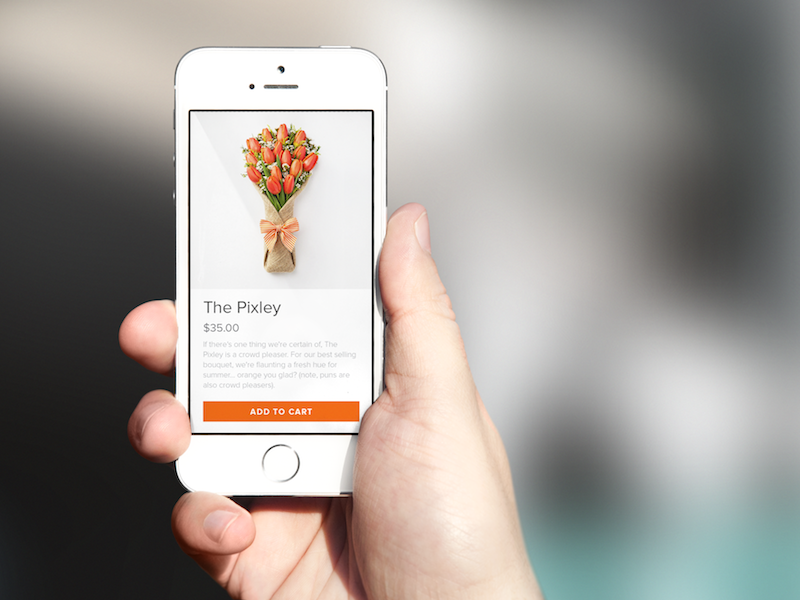 Bloomthat Mobile mobile ecommerce checkout ios mobile web product page