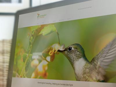 Hummingbird Consulting Site website design hummingbird consulting green bird