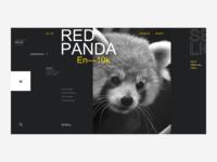 WWF Website Redesign - Endangered Species