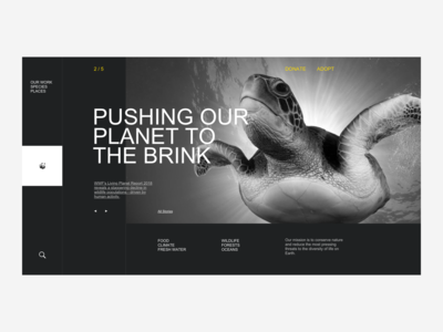 WWF Website Redesign - Home Page