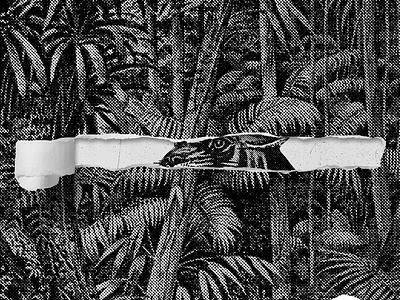 Tiger Psalms Vol.2 ripped paper print album cover vinyl music halftones tropical psalms tiger