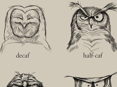 dribbbling caffeine illustration owls coffee caffeine