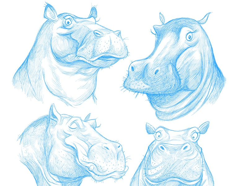 hungry illustration character design hippos