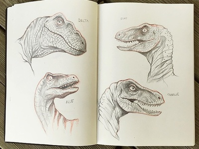 Sketching Raptors pencil drawing pencils jurassic world sketchbook illustration