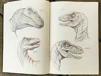 Sketching Raptors