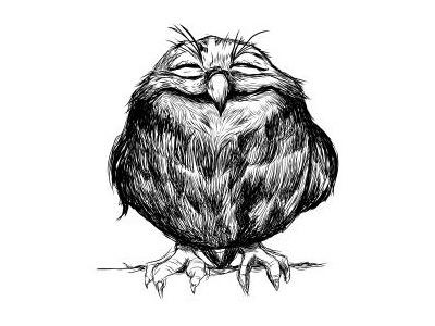 Owly ball