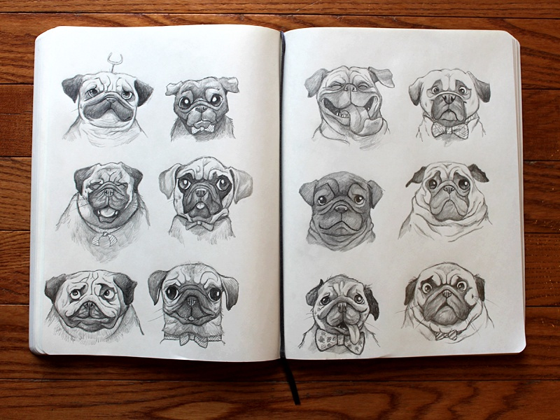 pugs illustration sketches pugs sketchbook pug drawing character designs