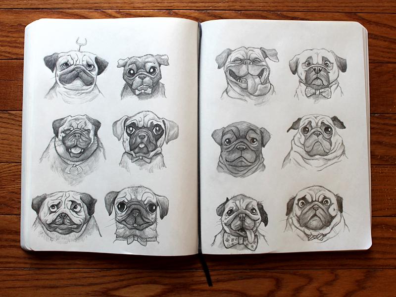 pugs illustration sketches pugs sketchbook pug drawing character designs