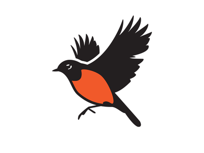Flying Robin bird logo robin illustration vector design brand logo