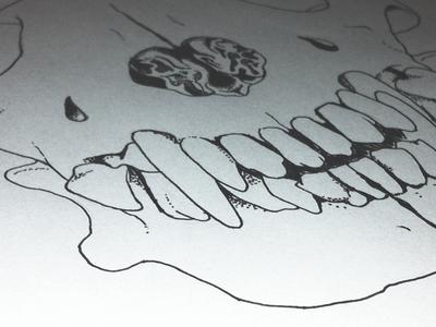 Illustrated Skull Shot