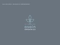 Osain organic brand book 03