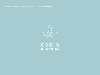 Osain Organics Logo clean minimal muted colours plant leaf organic outline vector logo design identity branding logo