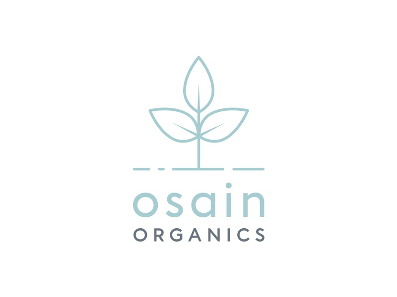 Osain Organics Logo clean minimal muted colours plant leaf organic outline vector logo design identity branding logo