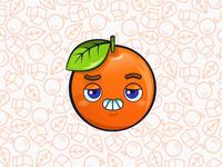 Mr. Orange - Juice Milk