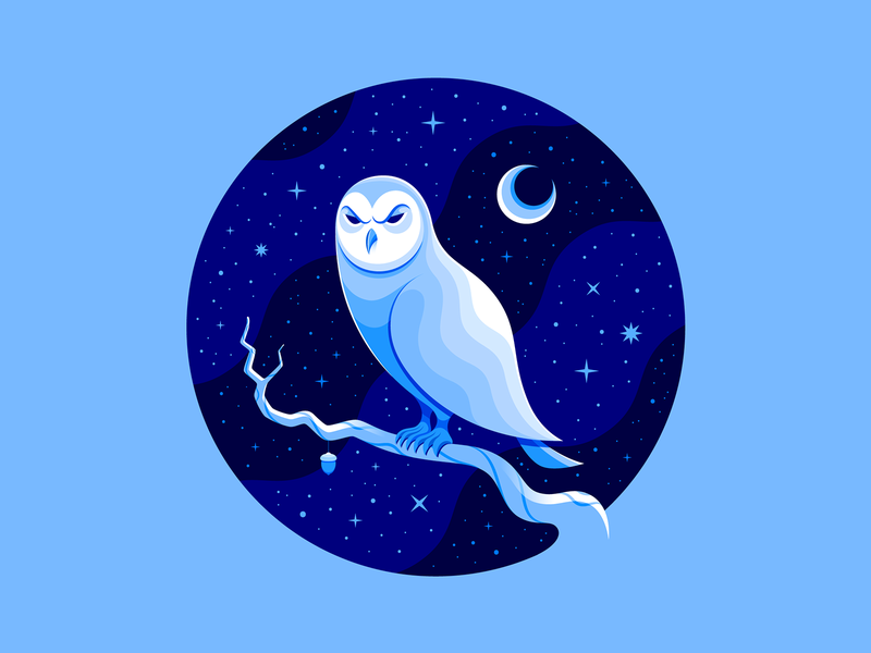 ✨ Snowy Owl ✨ monochromatic occult magical pottermore flat  design birds vector art snowy owl birds of prey hedwig badge owls owl design illustrator adobe illustrator vector icon illustration san diego