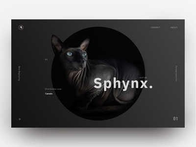 Format exercise product page visual design landing page clean minimalism web black cat ux ui