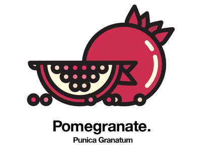Pomegranate healthy geometric icon fruit