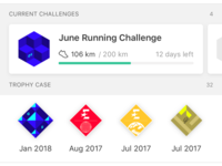 Trophy Case and Challenges on Strava Profile