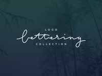 Logo & Lettering collection behance logotype type red original logo letters lettering letter font calligraphy blue