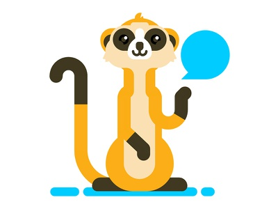Meerkat animal mongoose meerkat