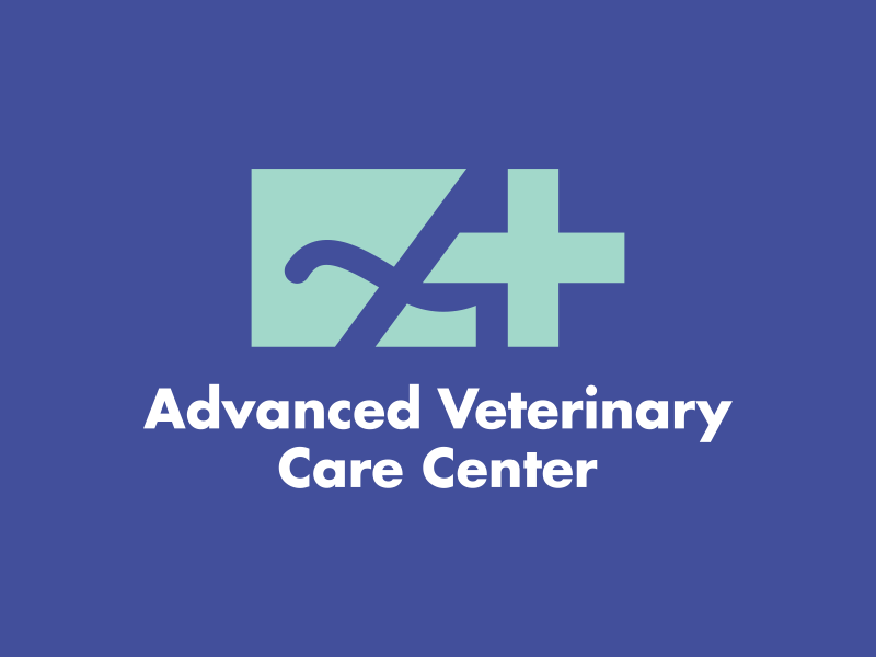 Vet Hospital Project logo