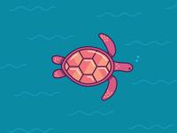 Sea Turtle - 17/30