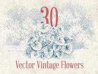 Vector Vintage Flowers