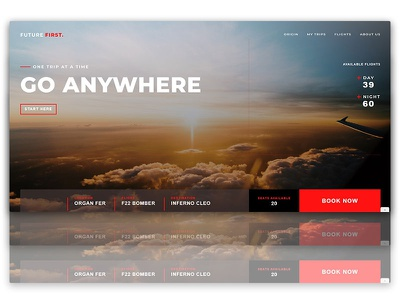 Airline UI Design Project clean ui webdesign clean design uidesign minimalist design landingpage website