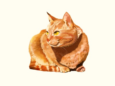 Orange cat illustration orange fat cat