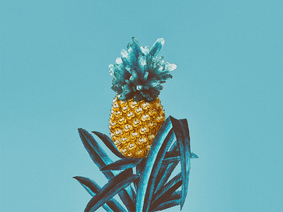 PINEAPPLE #1 fruit minimal color illustrator composition collage blue art illustration ananas