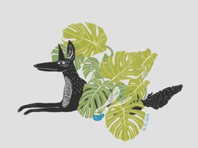 Tropical wolf photoshop wolf black tea illustrator animal digitalart drawing character art green tropical wood wolfy plants illustration forest design