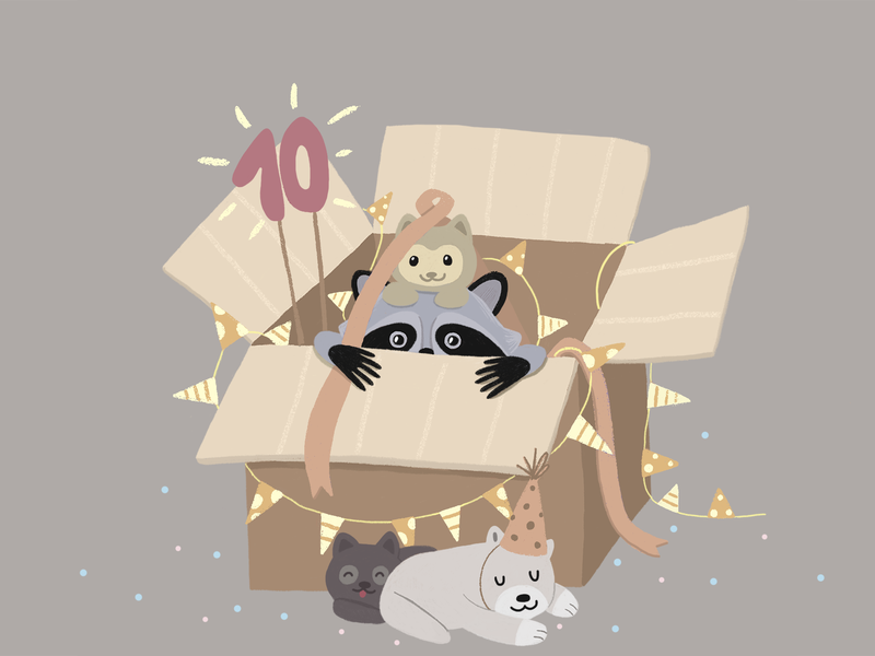 Waiting for birthday kitten raccoon photoshop box puppies happy happy birthday holiday animal art illustration birthday