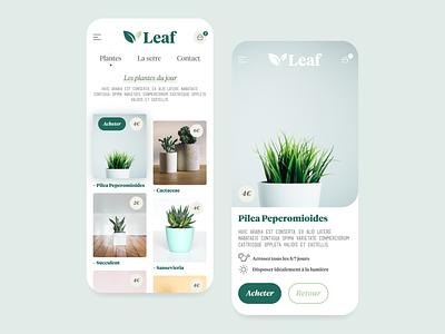 Indoor plants online shop green logo uidesign ui wild shop mobile greenhouse plants green webdesign adobexd